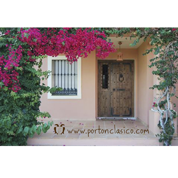 Rustic door Guadamur in Malaga